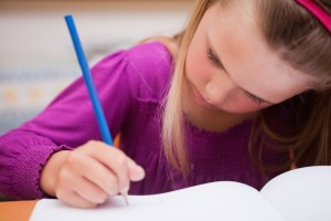 Private tuition WISE tutors Private tutors